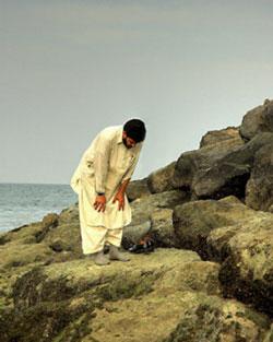 http://www.zawaj.com/images/photos/man_praying_ocean_rocks.jpg