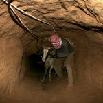 A Palestinian smuggles a sheep into the Gaza Strip through a tunnel under the Egypt-Gaza border at Rafah on December 5, 2008. The Muslim holiday of Eid al-Adha, or the Feast of the Sacrifice which commemorates Abraham's willingness to sacrifice his son for God starts Dec. 8 during which sheep are traditionally slaughtered. The Rafah border post with Egypt is the only crossing into Gaza not controlled by Israel, which has enforced a blockade on the territory since Hamas, which Israel regards as a terrorist group, seized power there in 2007. (SAID KHATIB/AFP/Getty Images)