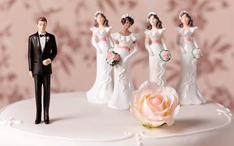 polygamy1.jpg