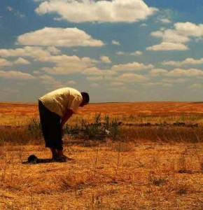 Man praying salat in a field