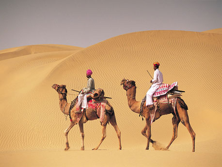 rajasthan india camel riders %photo