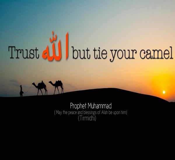 IslamicQuotesAboutLifeinspirationalSayings60 IslamicAnswers Interesting Islamic Quotes About Life